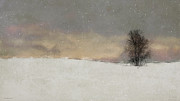Lone Tree Prints - Winter Falling Print by Ron Jones