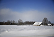 Elaine Mikkelstrup - Winter Farm