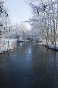 Snowy Stream Prints - Winter Landscape Print by Svetlana Sewell