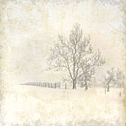 Pamela Baker - Winter on The Farm