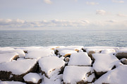 Sunny Art - Winter shore of lake Ontario by Elena Elisseeva