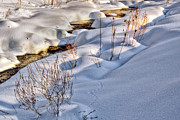 Rural Landscapes Photos - WInter Stream by Bill  Wakeley