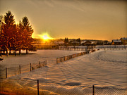 Shivery Framed Prints - Winter Sunset Framed Print by Nina Ficur Feenan