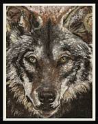 Mountain Tapestries - Textiles Prints - Wolf Print by Dena Kotka
