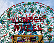 Mitch Cat - Wonder Wheel