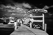 World Wide Sportsman Prints - World Wide Sportsman Bayside Marina Islamorada Florida Keys Usa Print by Joe Fox