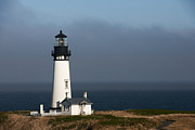Sandra Bronstein - Yaquina Head Lighthouse - Newport