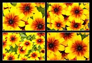 Illustration Photo Originals - Yellow flowers  by Tommy Hammarsten
