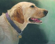 Golden Brown Pastels Prints - Yellow Lab Print by Howard Scherer