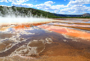 Susan Leonard - Yellowstone National Park