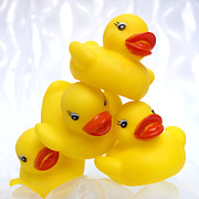 Cut-out Prints - Yelow ducks Print by Bernard Jaubert