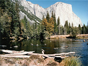 Barbara Snyder Prints - Yosemite In October Print by Barbara Snyder