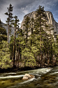Mark Duffy - Yosemite National Park