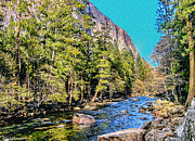 Yosemite Valley Along Yosemite River Beach Print by Nadine and Bob Johnston