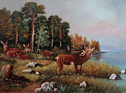 Dusan Vukovic - Young Deer Beside A Lake