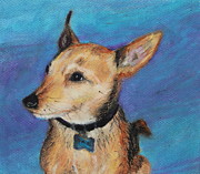 Terriers Pastels Framed Prints - Zack Framed Print by Jeanne Fischer