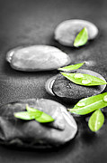 Droplets Prints - Zen stones Print by Elena Elisseeva