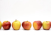 Order Photo Prints - Apples Print by Bernard Jaubert