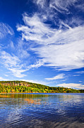 Sunny Metal Prints - Fall forest and lake Metal Print by Elena Elisseeva