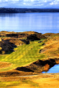 Golfers Framed Prints - 10th Hole at Chambers Bay Framed Print by David Patterson