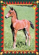 Morgan Drawings Posters - Morgan Horse Blank Christmas Card Poster by Olde Time  Mercantile