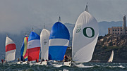 Alcatraz Prints - San Francisco Regatta Print by Steven Lapkin