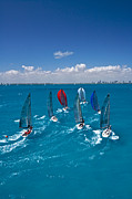 Regatta Prints - South Florida Regatta Print by Steven Lapkin