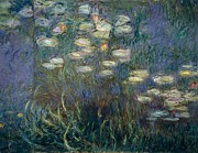 Nympheas Framed Prints - Water Lilies Framed Print by Claude Monet