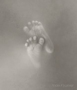 Grey Prints - Untitled Print by Anne Geddes