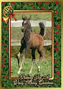 Christmas Card Pastels Posters - Arabian Horse Blank Christmas Card Poster by Olde Time  Mercantile