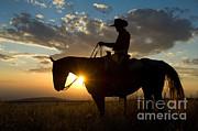 John Shaw - Cowboy