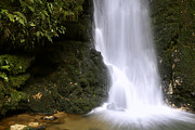 Closeup Photos - Waterfall by Les Cunliffe