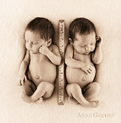 Black And White Prints - Untitled Print by Anne Geddes