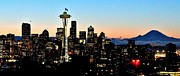 Seattle Skyline Framed Prints - 12th Man Sunrise Framed Print by Benjamin Yeager