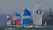Alcatraz Photos - San Francisco Regatta by Steven Lapkin