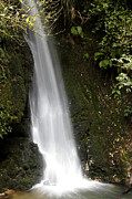 Closeup Photo Posters - Waterfall Poster by Les Cunliffe