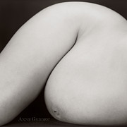 Form Prints - Untitled Print by Anne Geddes