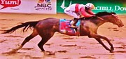 Horse Racing Posters Framed Prints - 139th Kentucky Derby WINNER Framed Print by Gunter  Hortz