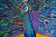 Print On Canvas Painting Prints - Peacock Print by Willson Lau