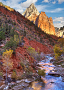 Changing Of The Seasons Framed Prints - Zion National Park Framed Print by Utah Images
