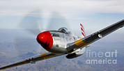 Prescott Framed Prints - A P-51d Mustang In Flight Framed Print by Scott Germain