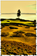 Us Open Photo Metal Prints - #15 at Chambers Bay - Location of the 2015 US Open Metal Print by David Patterson