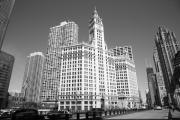 River Posters Prints - Chicago Skyline Print by Frank Romeo