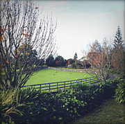 Ranch Photos - New Zealand by Les Cunliffe