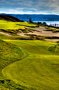 Us Open Framed Prints - #16 at Chambers Bay Golf Course - Location of the 2015 U.S. Open Tournament Framed Print by David Patterson