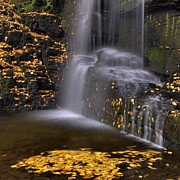 Gap Prints - Waterfall Detail Print by Stephen  Vecchiotti