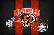 Cincinnati Framed Prints - Cincinnati Bengals Framed Print by Joe Hamilton