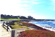 Beach Fence Digital Art Posters - 17 Mile Drive Shore Line II Poster by Barbara Snyder