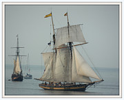 Marcia Lee Jones Framed Prints - 1812 Pride of Baltimore II Framed Print by Marcia Lee Jones
