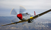 Prescott Posters - A P-51d Mustang In Flight Poster by Scott Germain